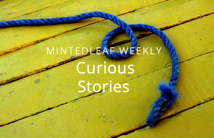 How to climb a rope and other curious stories
