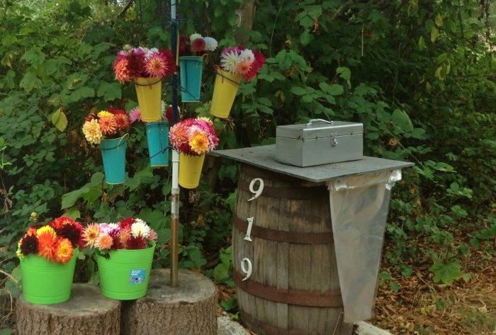 Roadside dahlia flower stand